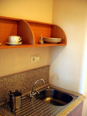 Гелиос Отель студио кухня